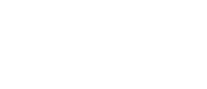 New England Shock Volleyball Logo