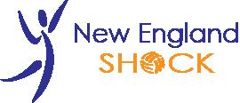 New England Shock Volleyball Logo